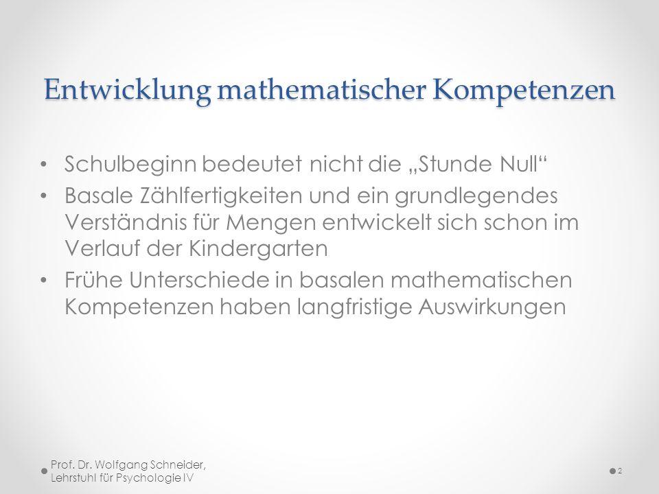 Entwicklung mathematischer Kompetenzen