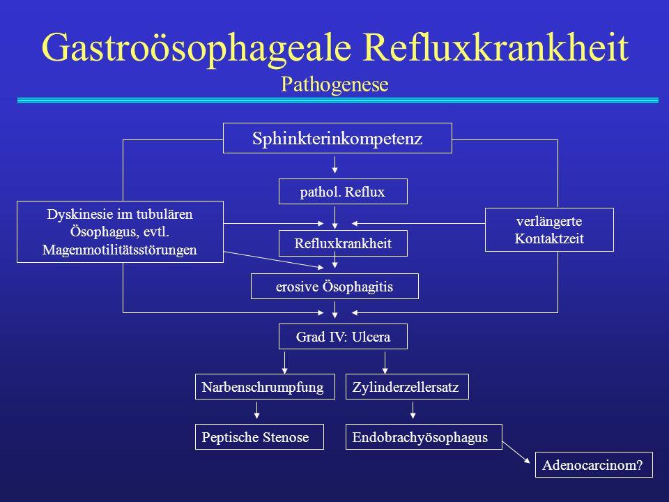 Gastroösophageale Refluxkrankheit Pathogenese