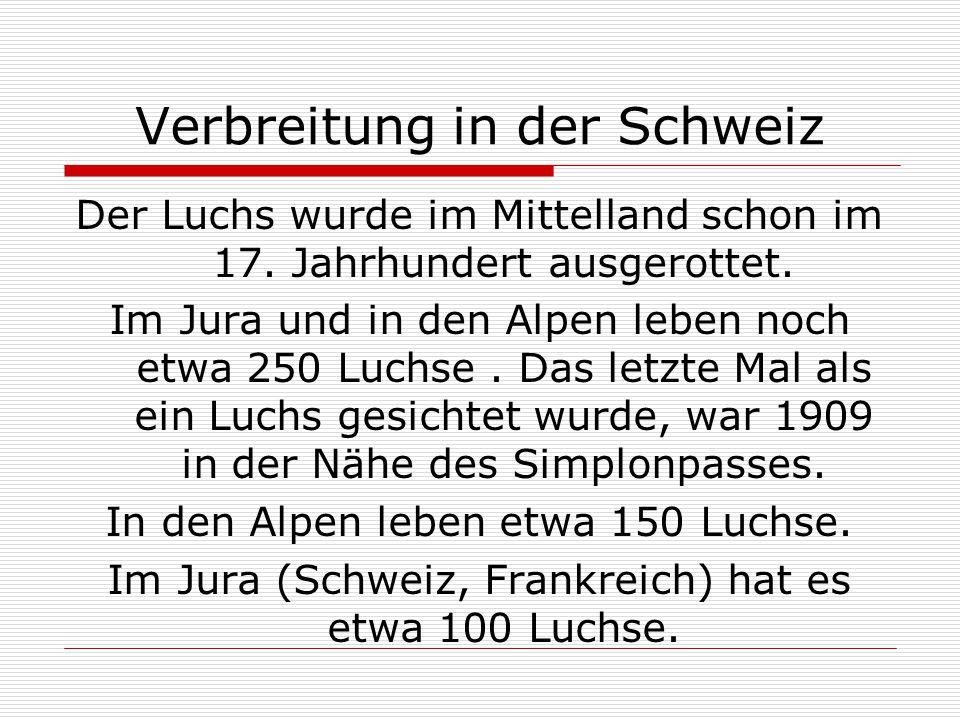 Verbreitung in der Schweiz