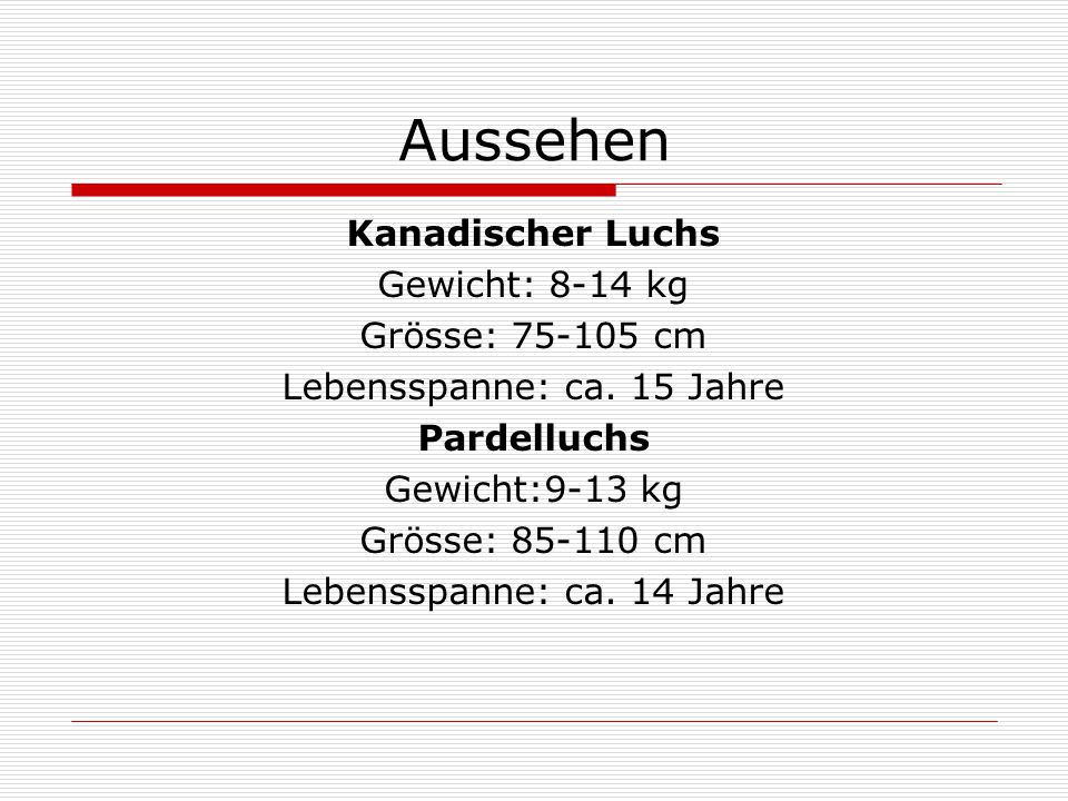 Aussehen Kanadischer Luchs Gewicht: 8-14 kg Grösse: 75-105 cm