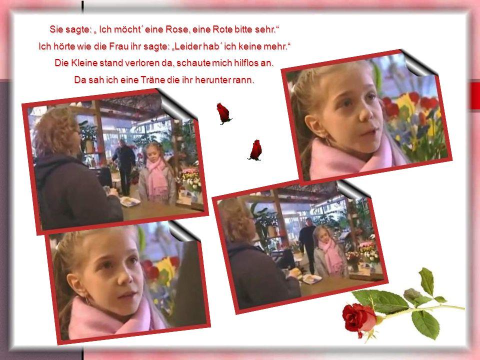 """Sie sagte: """" Ich möcht´ eine Rose, eine Rote bitte sehr."""
