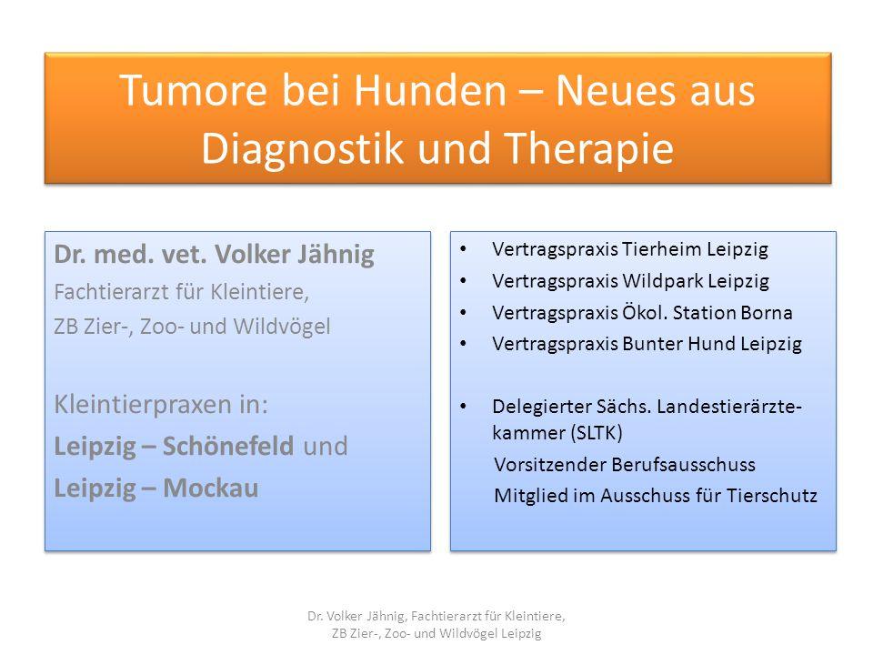 Tumore bei Hunden – Neues aus Diagnostik und Therapie