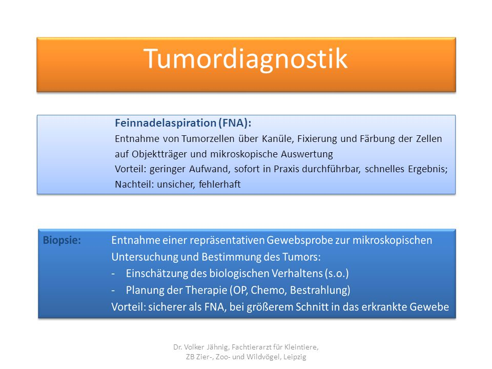 Tumordiagnostik