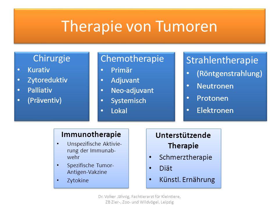 Unterstützende Therapie