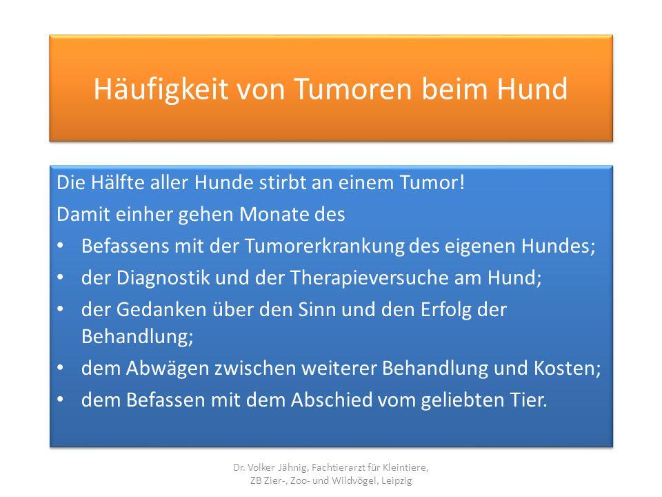 Häufigkeit von Tumoren beim Hund