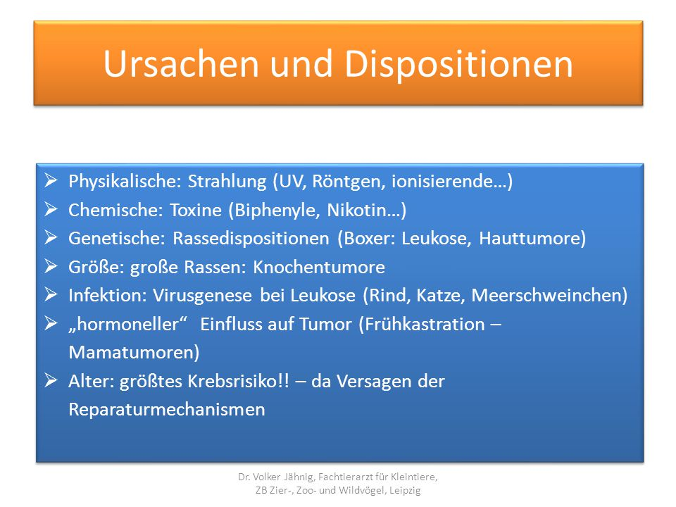 Ursachen und Dispositionen