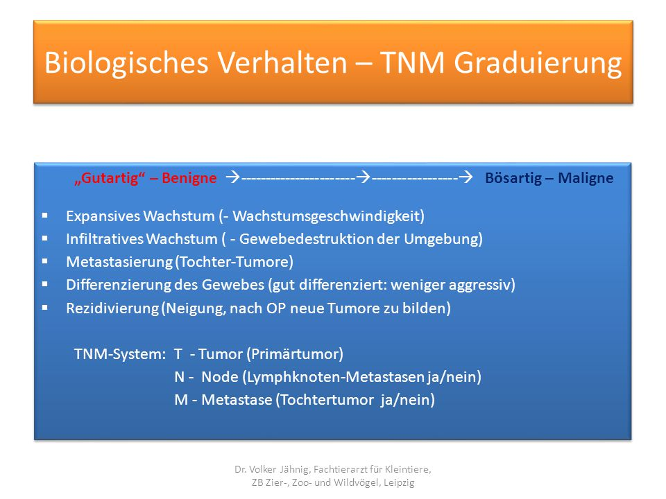 Biologisches Verhalten – TNM Graduierung