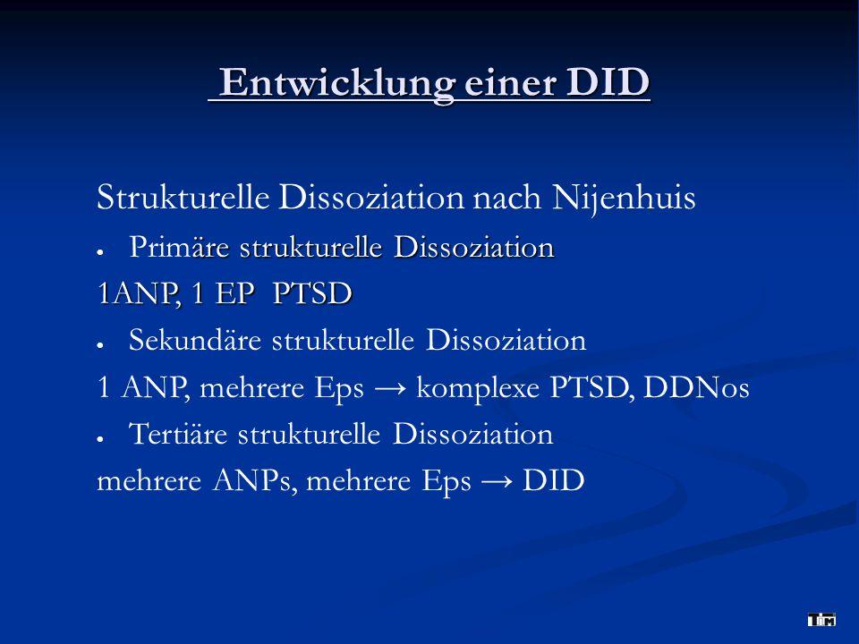 Entwicklung einer DID Strukturelle Dissoziation nach Nijenhuis