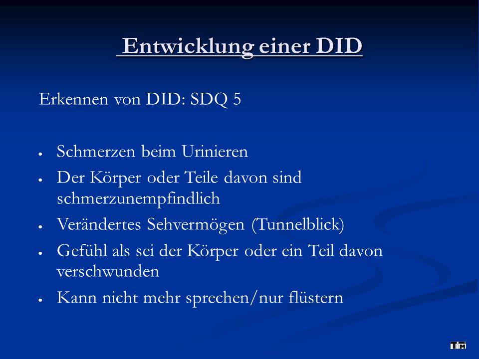 Entwicklung einer DID Erkennen von DID: SDQ 5 Schmerzen beim Urinieren