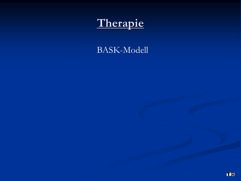 Therapie BASK-Modell