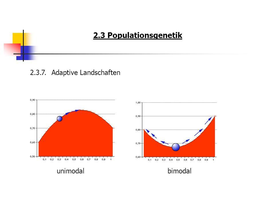 2.3 Populationsgenetik 2.3.7. Adaptive Landschaften unimodal bimodal