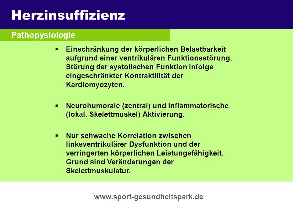 Herzinsuffizienz Überschrift Pathopysiologie Untertitel