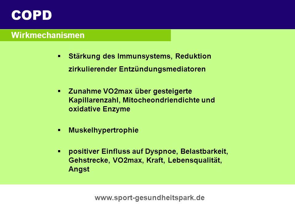COPD Überschrift Wirkmechanismen Untertitel