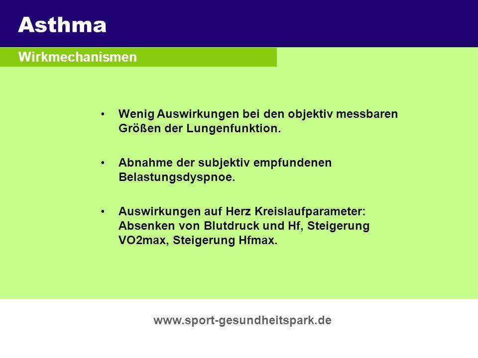 Asthma Überschrift Wirkmechanismen Untertitel