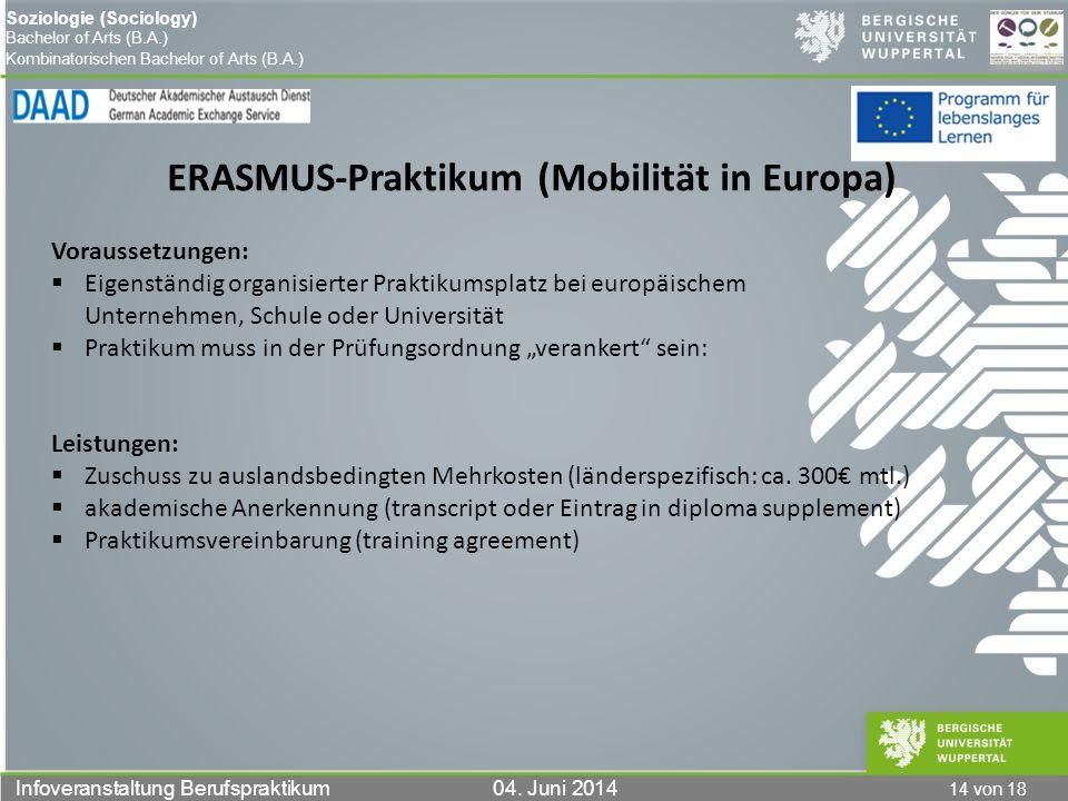 ERASMUS-Praktikum (Mobilität in Europa)
