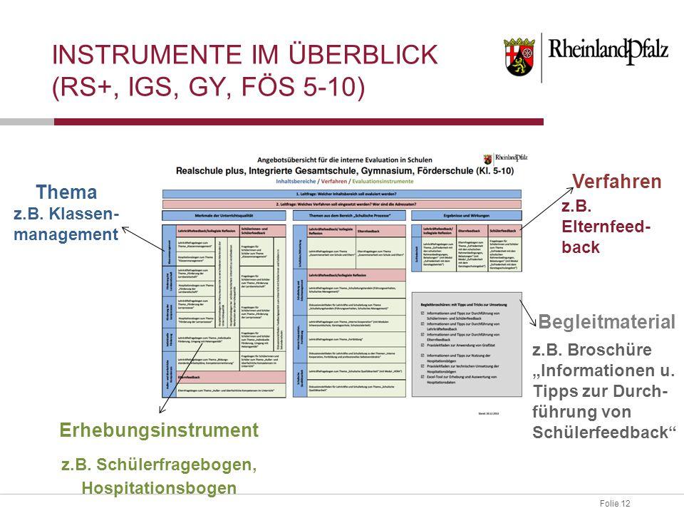 Instrumente im Überblick (RS+, IGS, GY, FÖS 5-10)