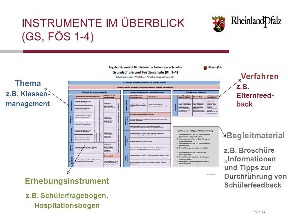 Instrumente im Überblick (GS, FÖS 1-4)