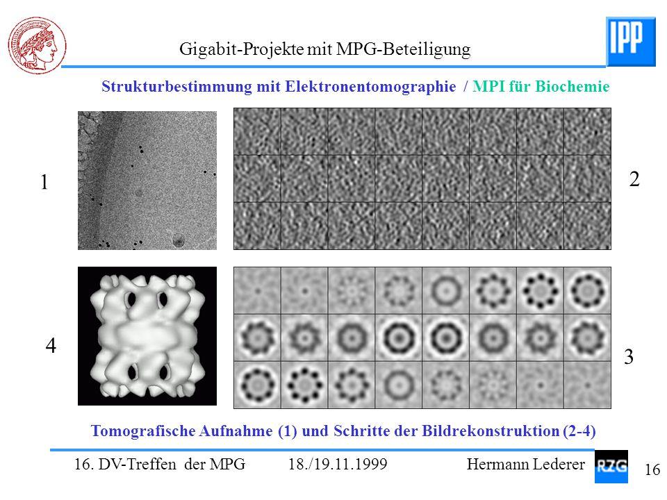 Strukturbestimmung mit Elektronentomographie / MPI für Biochemie