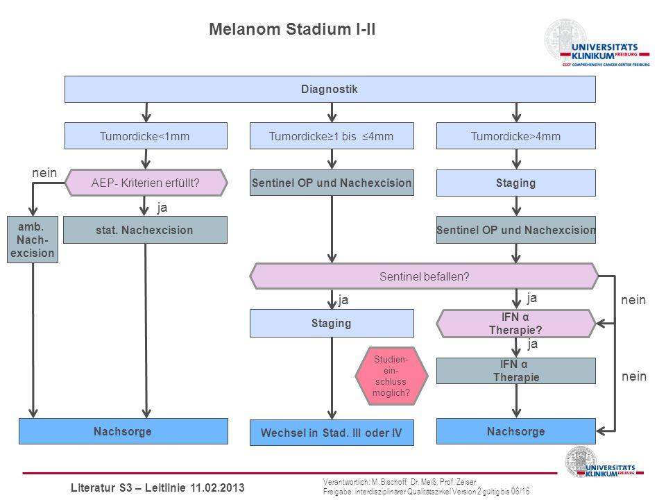 Melanom Stadium I-II nein ja ja ja nein ja nein Diagnostik