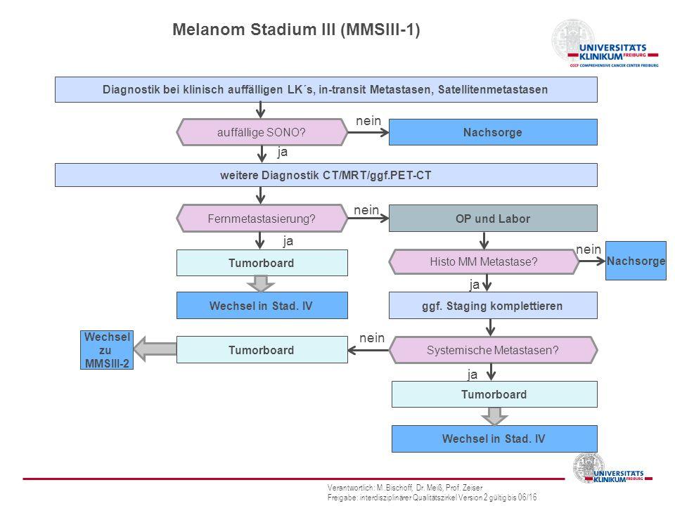 Melanom Stadium III (MMSIII-1)