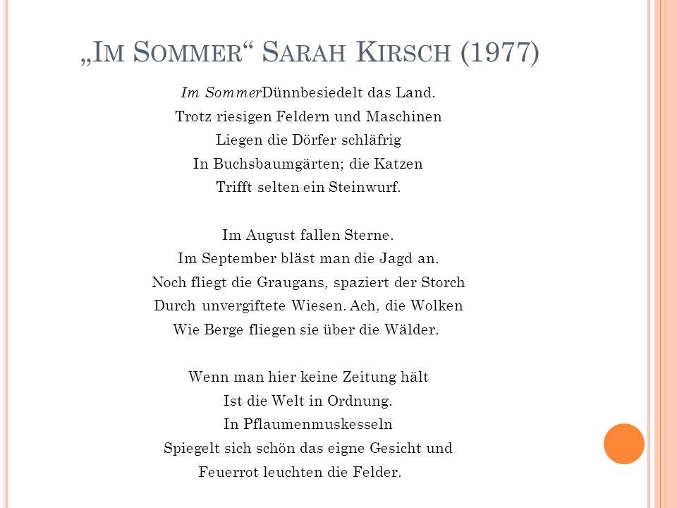 """""""Im Sommer Sarah Kirsch (1977)"""