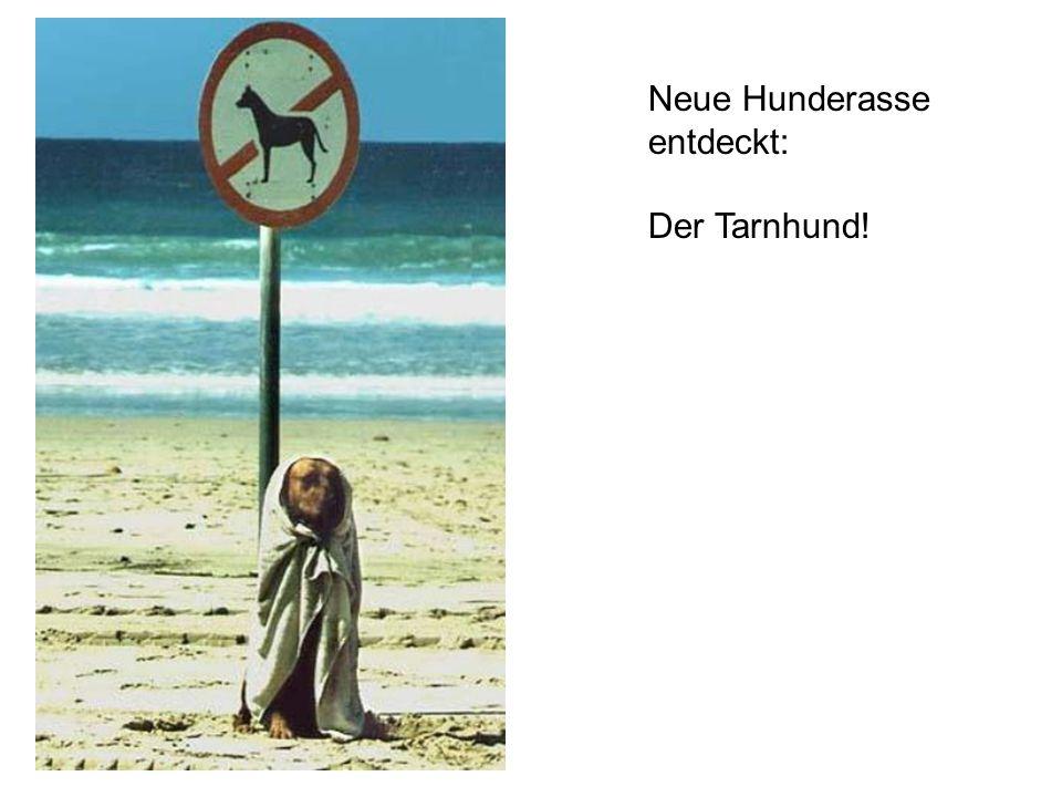 Neue Hunderasse entdeckt: Der Tarnhund!