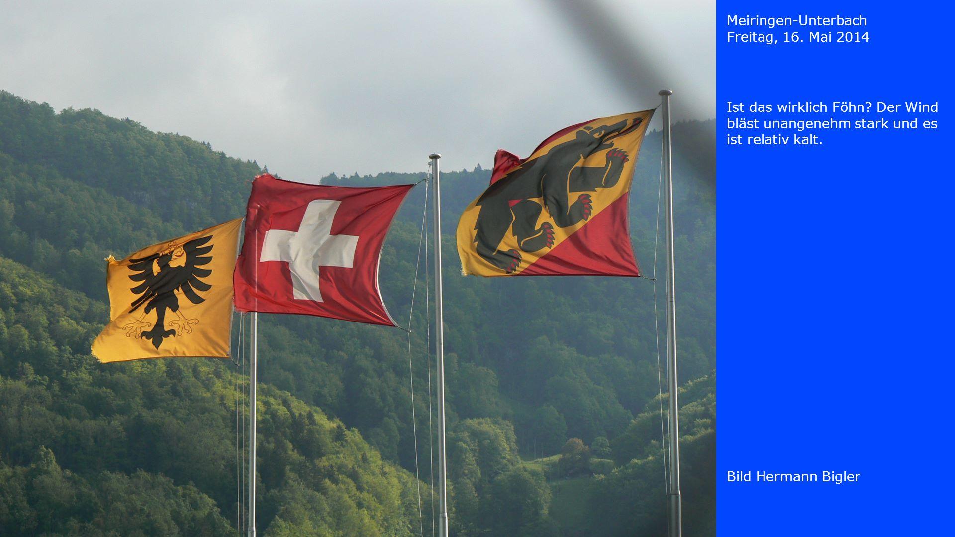 Meiringen-Unterbach Freitag, 16. Mai 2014. Ist das wirklich Föhn Der Wind bläst unangenehm stark und es ist relativ kalt.