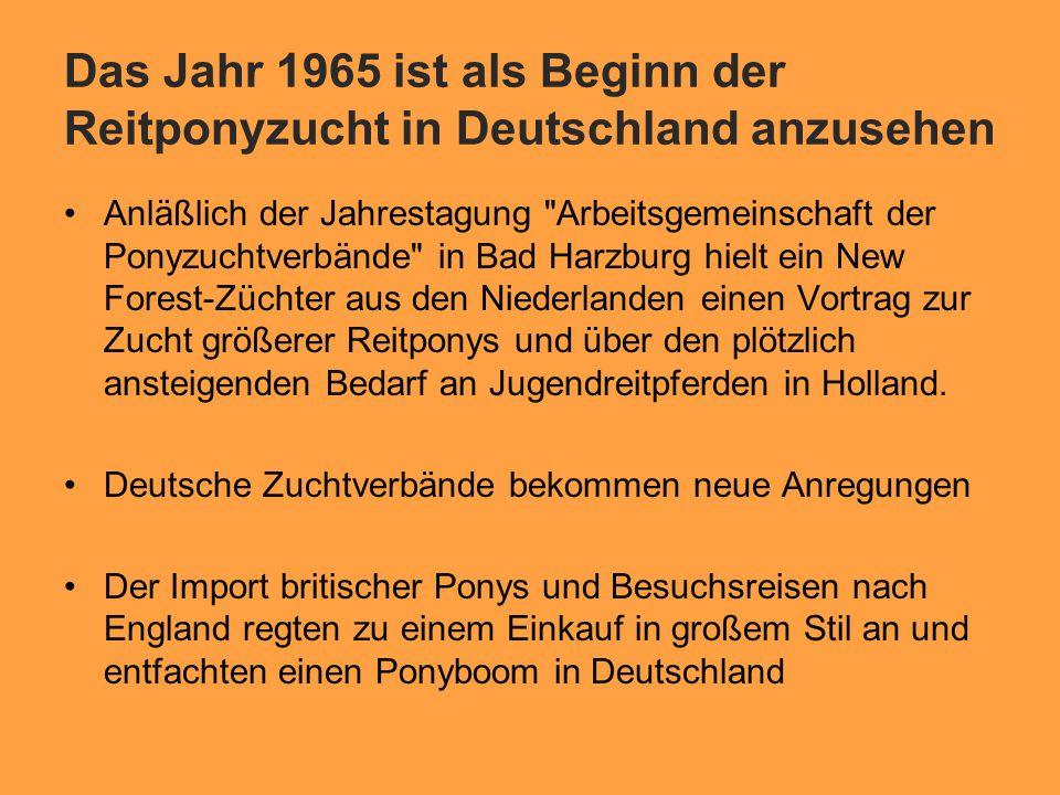 Das Jahr 1965 ist als Beginn der Reitponyzucht in Deutschland anzusehen