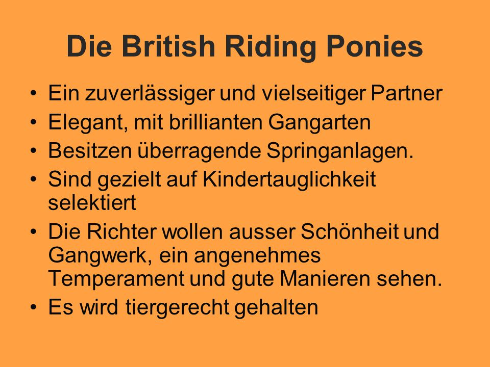 Die British Riding Ponies