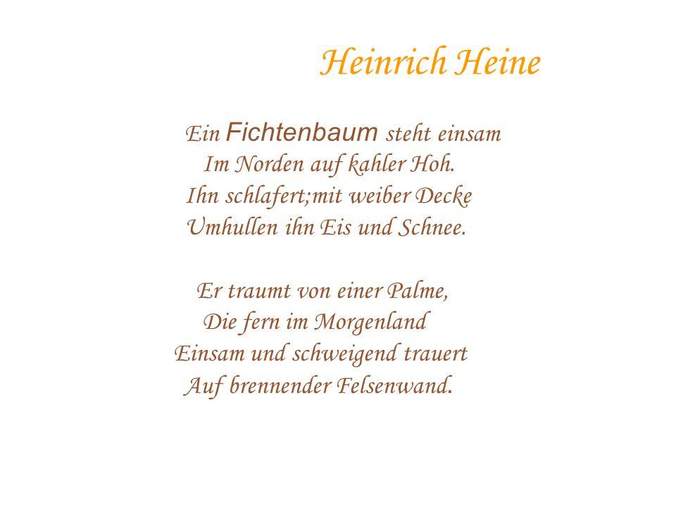 Heinrich Heine Ein Fichtenbaum steht einsam Im Norden auf kahler Hoh.