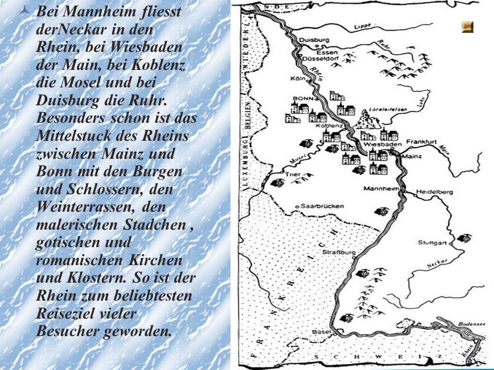 Bei Mannheim fliesst derNeckar in den Rhein, bei Wiesbaden der Main, bei Koblenz die Mosel und bei Duisburg die Ruhr.