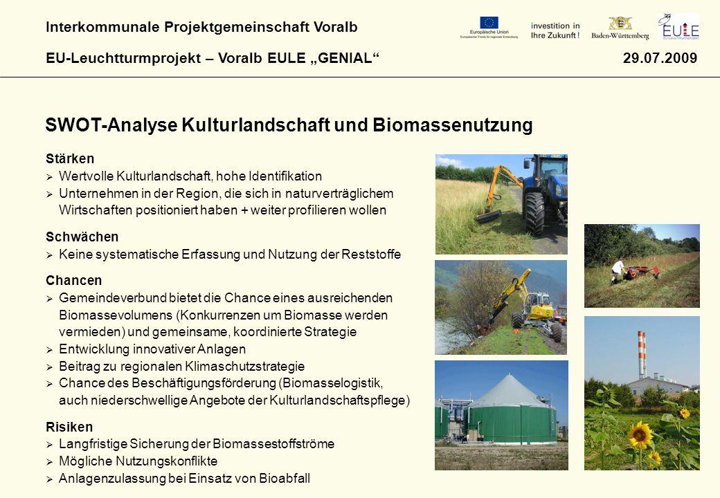 SWOT-Analyse Kulturlandschaft und Biomassenutzung