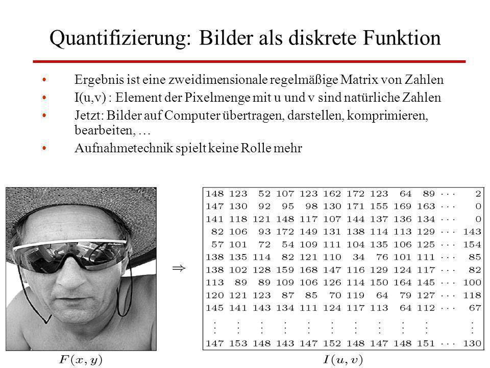 Quantifizierung: Bilder als diskrete Funktion