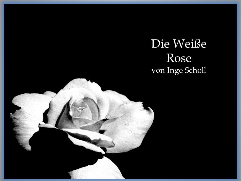 Die Weiße Rose von Inge Scholl
