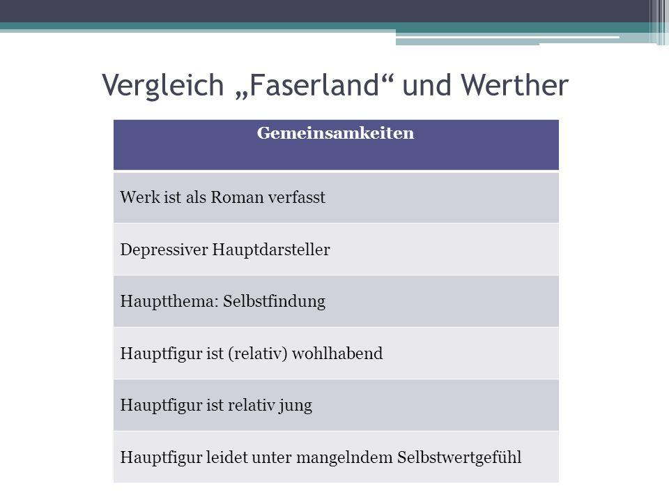 """Vergleich """"Faserland und Werther"""