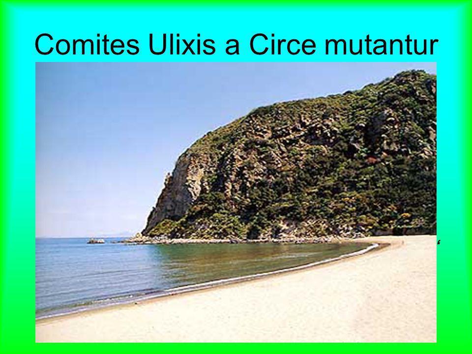Comites Ulixis a Circe mutantur
