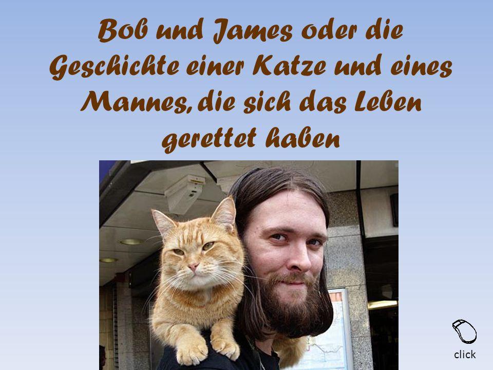 Bob und James oder die Geschichte einer Katze und eines Mannes, die sich das Leben gerettet haben