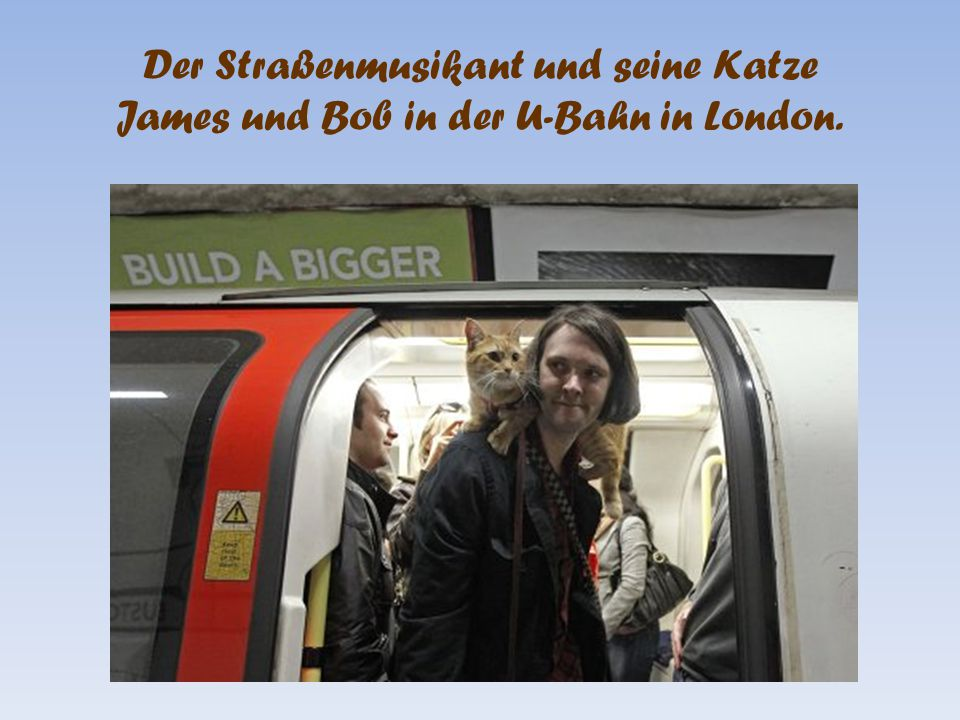 Der Straßenmusikant und seine Katze James und Bob in der U-Bahn in London.