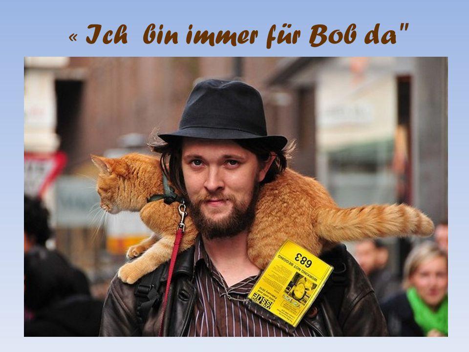 « Ich bin immer für Bob da