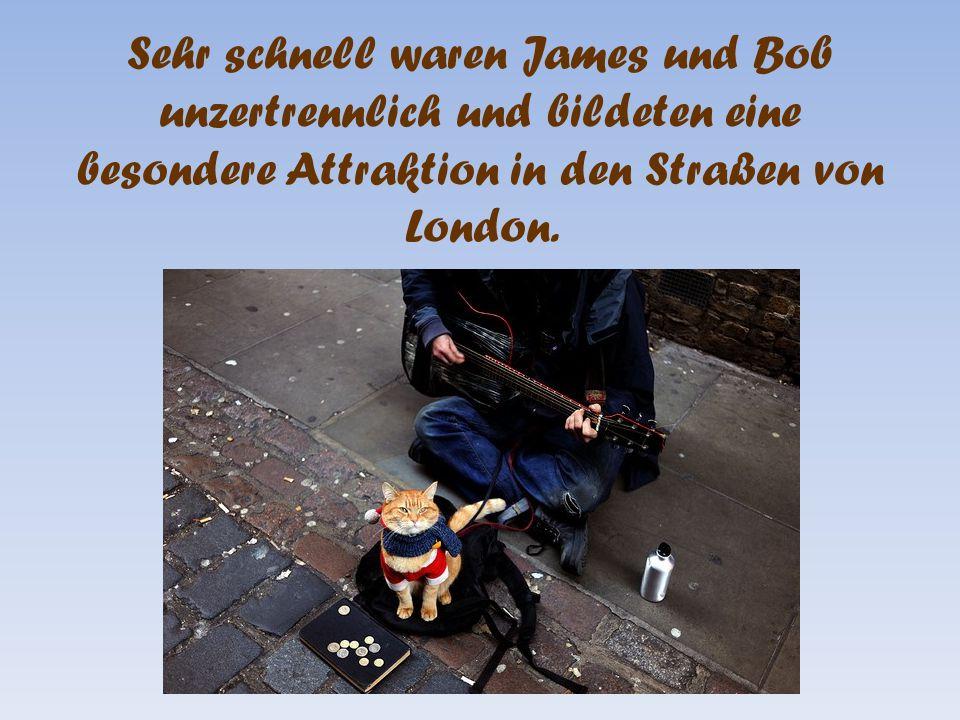Sehr schnell waren James und Bob unzertrennlich und bildeten eine besondere Attraktion in den Straßen von London.