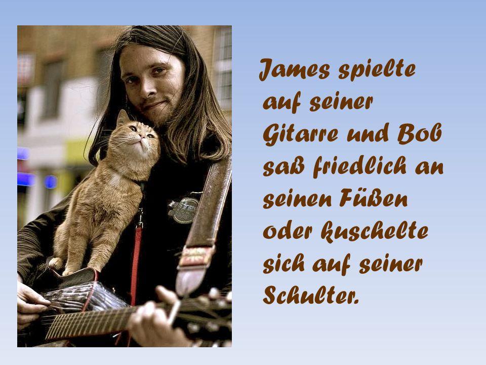James spielte auf seiner Gitarre und Bob saß friedlich an seinen Füßen oder kuschelte sich auf seiner Schulter.