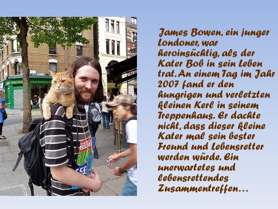 James Bowen, ein junger Londoner, war heroinsüchtig, als der Kater Bob in sein Leben trat.