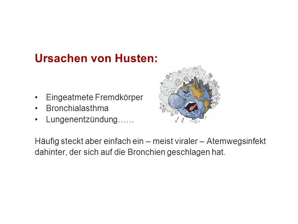 Ursachen von Husten: Eingeatmete Fremdkörper Bronchialasthma
