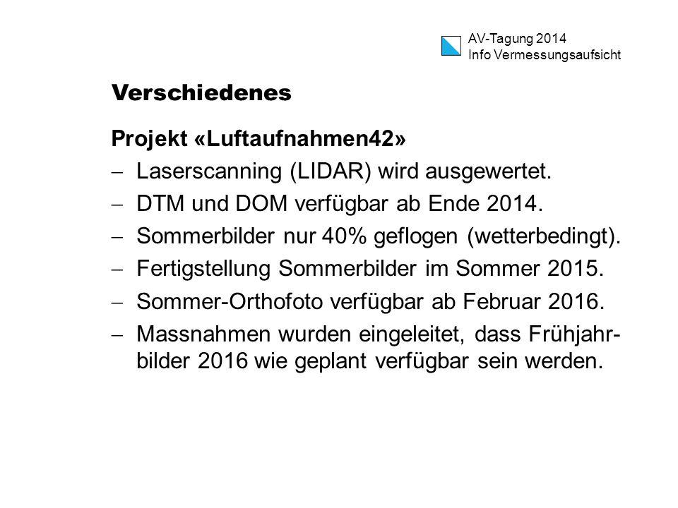 Verschiedenes Projekt «Luftaufnahmen42» Laserscanning (LIDAR) wird ausgewertet. DTM und DOM verfügbar ab Ende 2014.