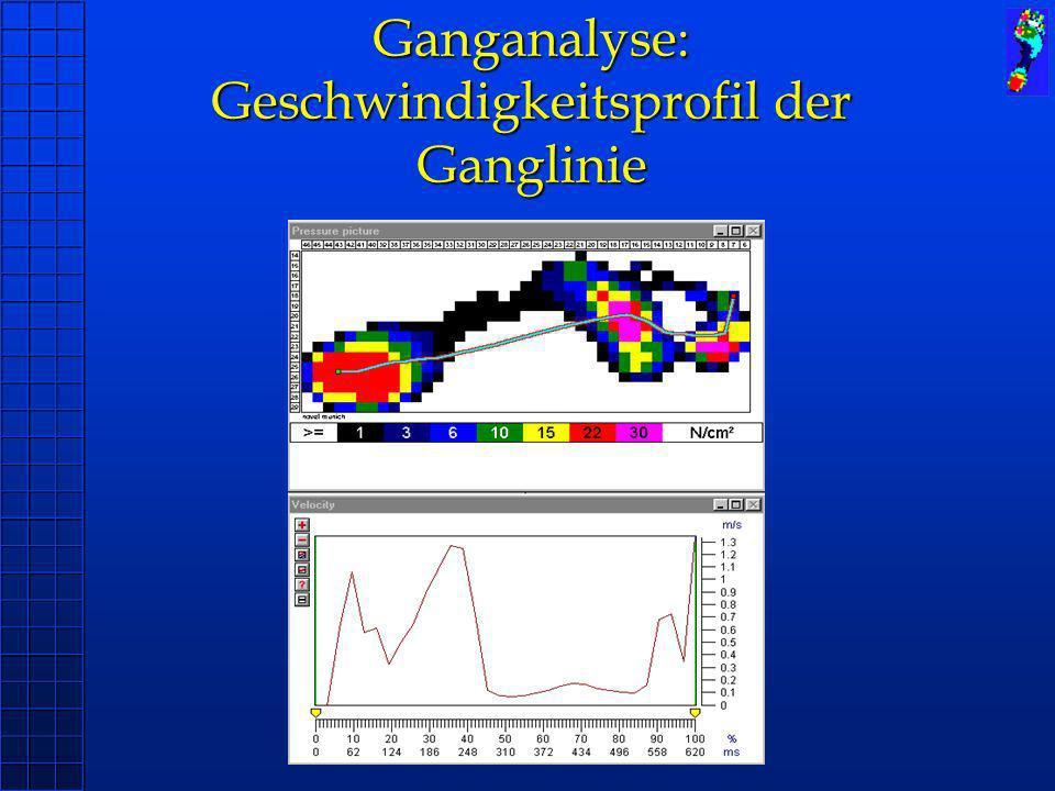 Ganganalyse: Geschwindigkeitsprofil der Ganglinie
