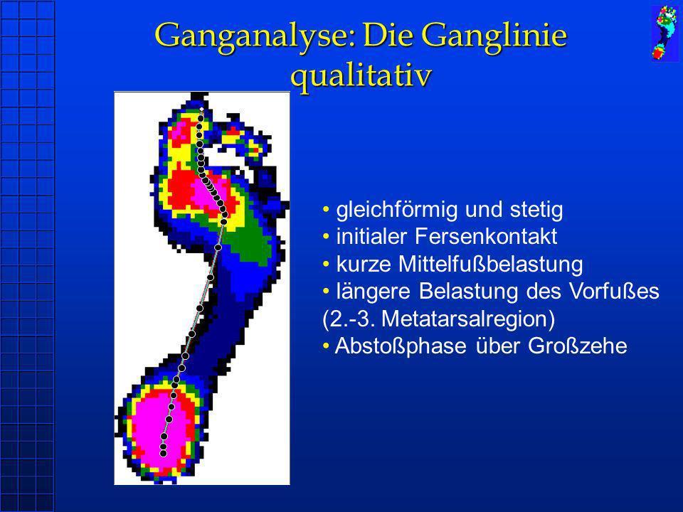 Ganganalyse: Die Ganglinie qualitativ