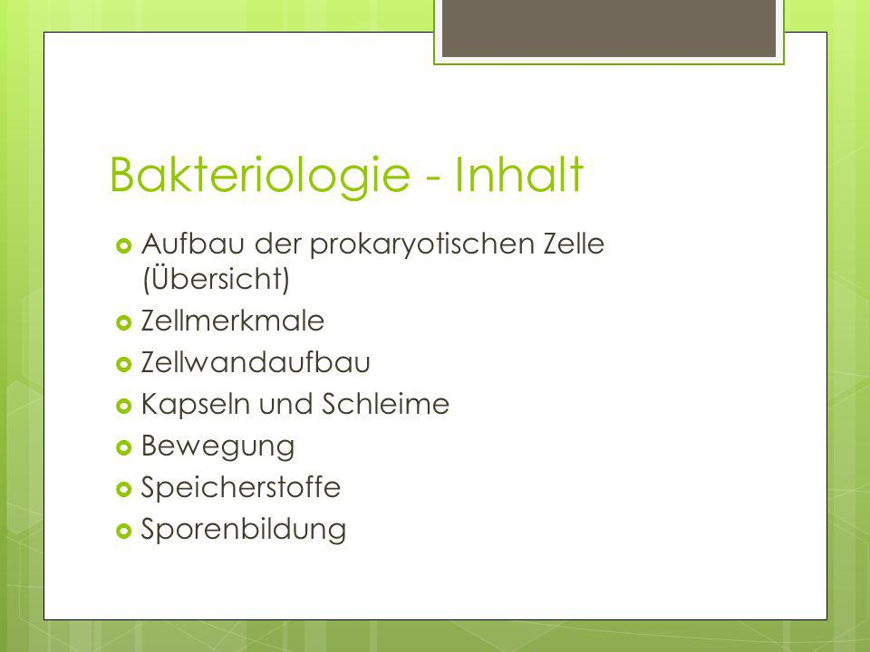 Bakteriologie - Inhalt