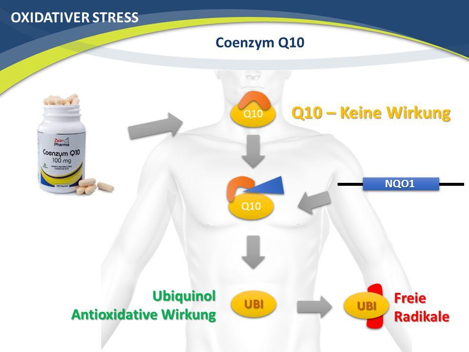 Q10 – Keine Wirkung OXIDATIVER STRESS Coenzym Q10 Ubiquinol
