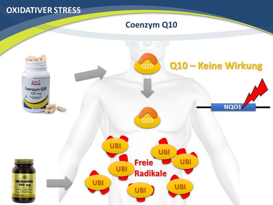 Q10 – Keine Wirkung OXIDATIVER STRESS Coenzym Q10 Freie Radikale UBI