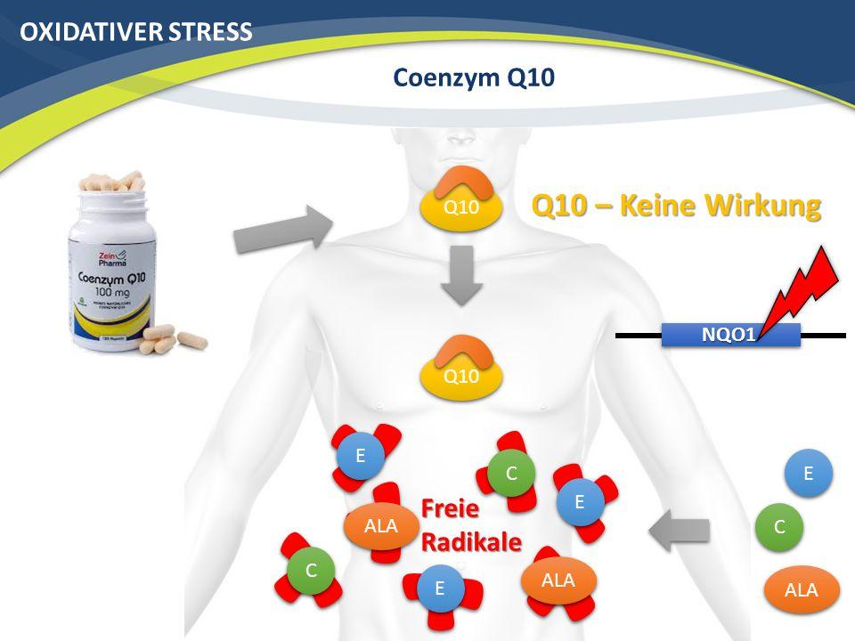Q10 – Keine Wirkung OXIDATIVER STRESS Coenzym Q10 Freie Radikale Q10